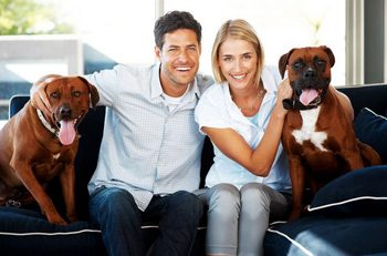 CoupleWithBoxerDogsOnCouch